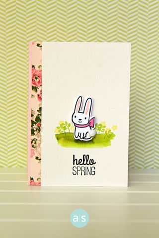 A Muse Studio February Collection Somebunny Loves You Hello Spring WC