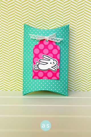 A Muse Studio February Collection Somebunny Loves You Pillow box