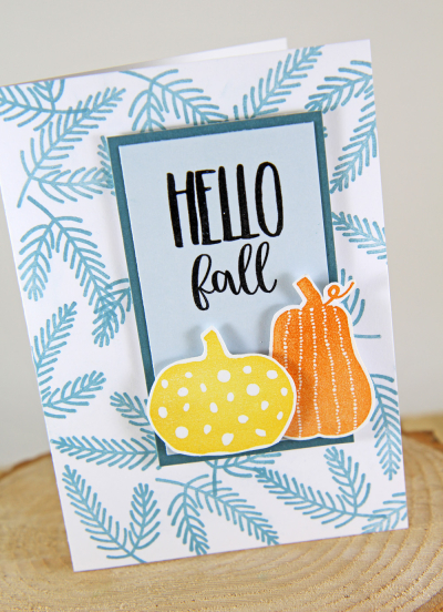 A Muse Studio EDBT with Hello Pumpkin A